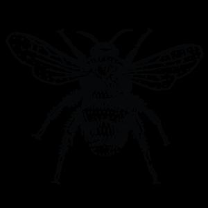 Μέλισες